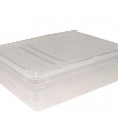 Braplast transparente 3L lot de 10