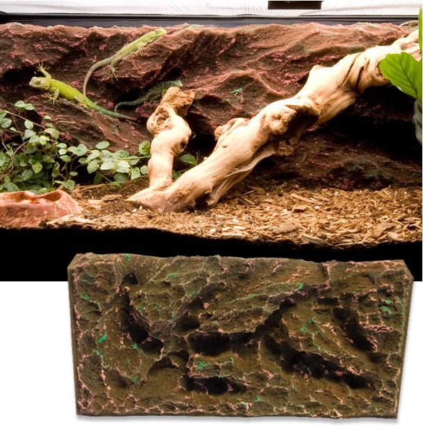 T rex rock ridge vivarium background 10 gal josh s frogs