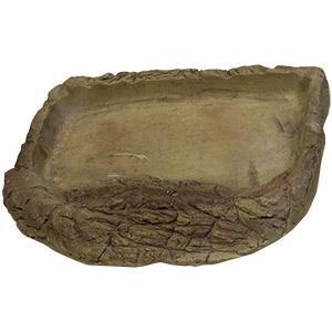 tortoise pool medium